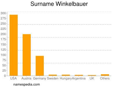 Surname Winkelbauer