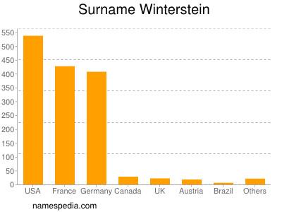 Surname Winterstein