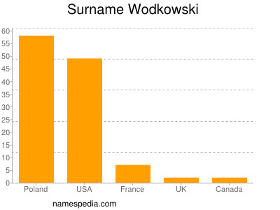 Surname Wodkowski