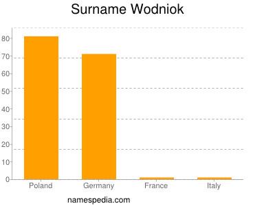 Surname Wodniok