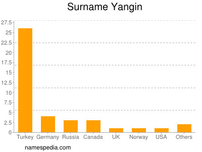 Surname Yangin