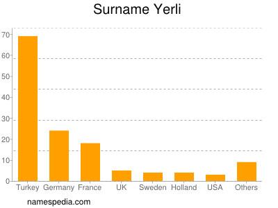Surname Yerli
