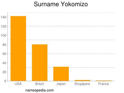 Surname Yokomizo
