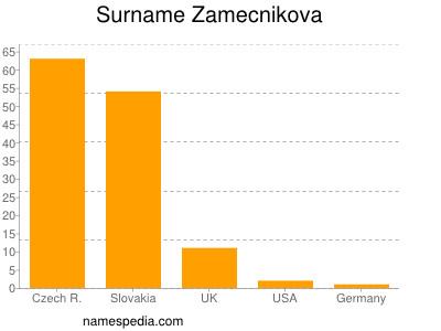 Surname Zamecnikova