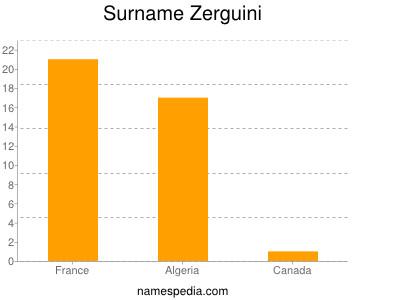 Surname Zerguini