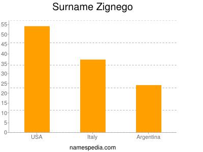 Surname Zignego