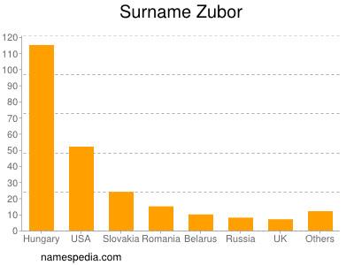 Surname Zubor