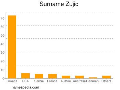 Surname Zujic