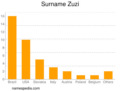 Surname Zuzi