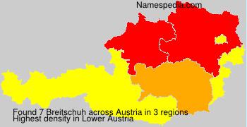 Breitschuh