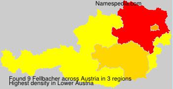 Fellbacher