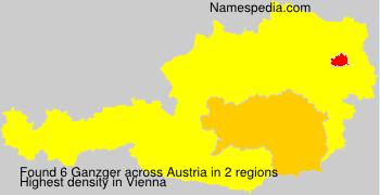 Ganzger