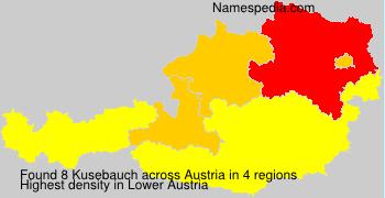 Kusebauch