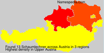 Schaumlechner