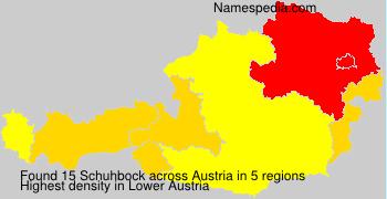 Schuhbock