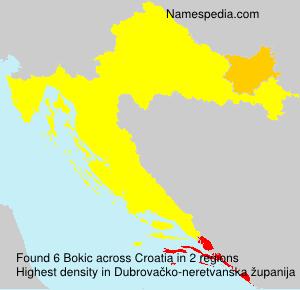 Bokic