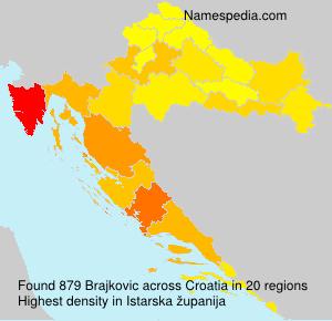Brajkovic
