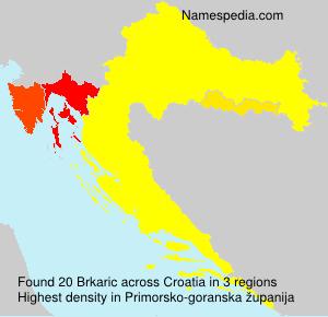 Brkaric