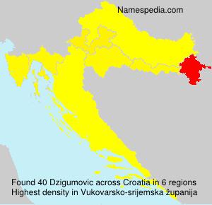 Dzigumovic