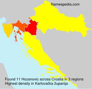 Hozanovic