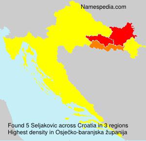 Seljakovic