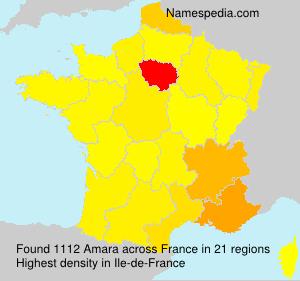Surname Amara in France
