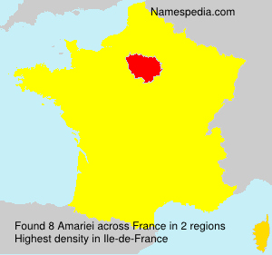 Surname Amariei in France