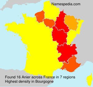 Surname Anier in France