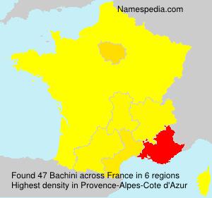 Bachini