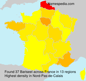Bariseel