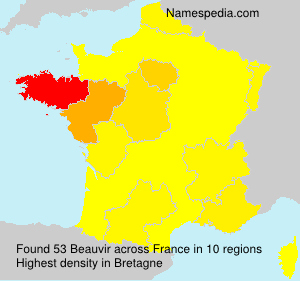 Surname Beauvir in France