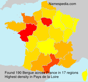 Surname Bergue in France
