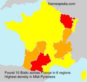 Surname Bialic in France