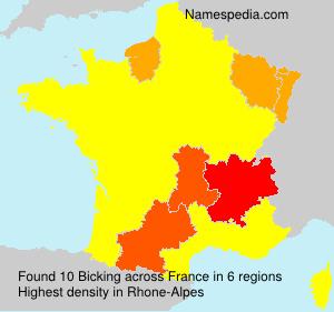 Surname Bicking in France