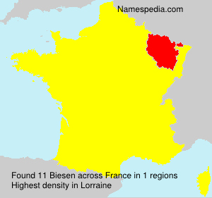 Familiennamen Biesen - France