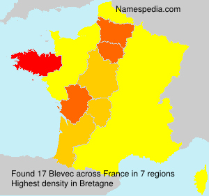 Surname Blevec in France