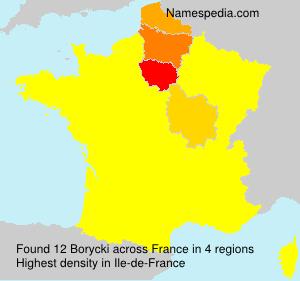 Familiennamen Borycki - France