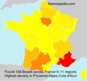Surname Boselli in France