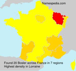 Surname Bosler in France