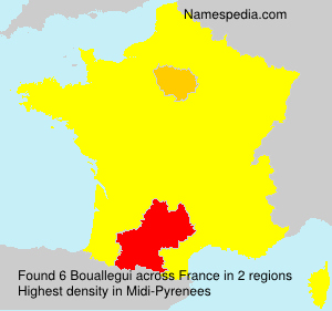Surname Bouallegui in France
