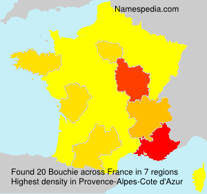Surname Bouchie in France