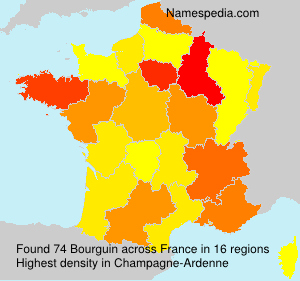Surname Bourguin in France