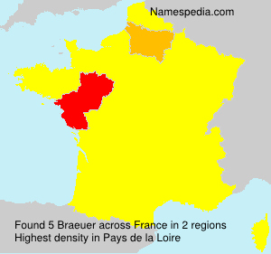 Surname Braeuer in France