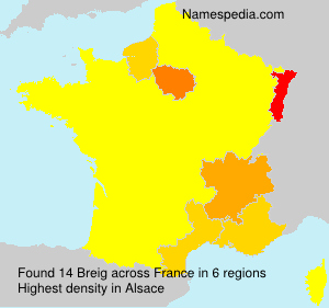 Surname Breig in France