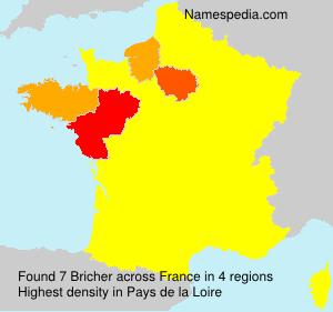 Bricher