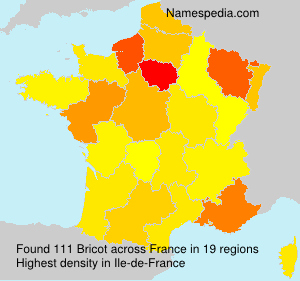 Surname Bricot in France