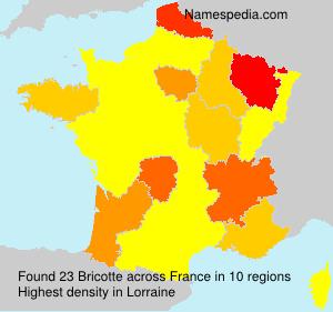 Bricotte