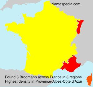 Brodmann