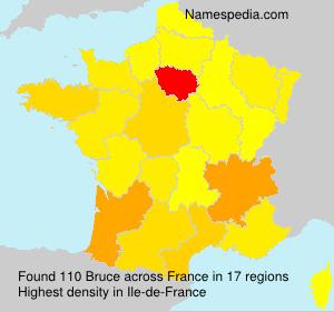 Surname Bruce in France