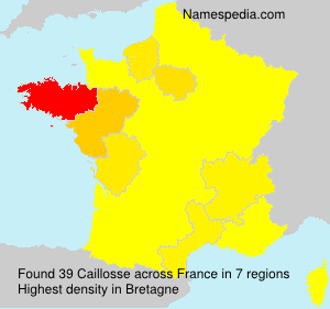 Caillosse